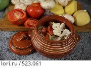 Купить «Приготовление жаркого в глиняном горшочке для запекания», фото № 523061, снято 24 октября 2008 г. (c) Анна Игонина / Фотобанк Лори