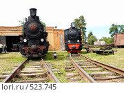 Купить «Два паровоза в музее узкоколейной железной дороги. Переславль-Залесский», фото № 523745, снято 16 июня 2007 г. (c) Александр Максимов / Фотобанк Лори