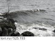 Купить «Весенний шторм на озере Вуокса (черно-белое фото)», фото № 525193, снято 30 апреля 2007 г. (c) Max Toporsky / Фотобанк Лори