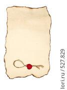 Свиток с печатью и горелыми краями. Стоковое фото, фотограф Егор Архипов / Фотобанк Лори