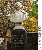 Купить «Памятник от Союза», фото № 529285, снято 11 октября 2008 г. (c) Оля Косолапова / Фотобанк Лори