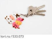 Купить «Брелок корова и бычок с ключами от новой квартиры», эксклюзивное фото № 533073, снято 29 октября 2008 г. (c) Александр Щепин / Фотобанк Лори