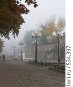 Купить «Фонари в утреннем тумане», фото № 534397, снято 14 октября 2008 г. (c) Роман Мельник / Фотобанк Лори