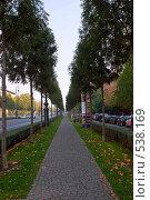 Купить «Проспект Андраши в Будапеште», фото № 538169, снято 21 октября 2008 г. (c) Елена Галачьянц / Фотобанк Лори