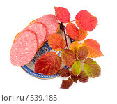 Купить «Осенний бутерброд», фото № 539185, снято 18 октября 2018 г. (c) Коннов Леонид Петрович / Фотобанк Лори