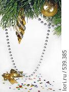 Купить «Новогодние украшения на ветки сосны», фото № 539385, снято 29 октября 2008 г. (c) Логинова Елена / Фотобанк Лори