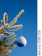 Купить «Новогодний шар», фото № 539729, снято 5 января 2008 г. (c) podfoto / Фотобанк Лори