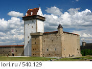 Город Нарва, Эстония, вид на крепость. Стоковое фото, фотограф Алексей Семенов / Фотобанк Лори