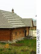 Купить «Традиционный украинский дом.Казачье поселение.», фото № 540797, снято 2 ноября 2008 г. (c) Сергей Литвиненко / Фотобанк Лори