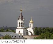 Купить «Владимир», фото № 542481, снято 11 июня 2008 г. (c) Евгений Перов / Фотобанк Лори