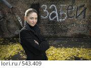 Красивая молодая девушка на фоне старой стены. Стоковое фото, фотограф Vladimir Kolobov / Фотобанк Лори