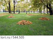 Купить «Осень пришла», фото № 544505, снято 9 октября 2008 г. (c) Андрюхина Анастасия / Фотобанк Лори