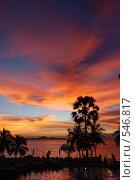 Купить «Закат. Паттайя. Таиланд», фото № 546817, снято 1 ноября 2008 г. (c) Екатерина Овсянникова / Фотобанк Лори