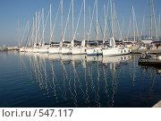 Купить «Сардиния. Гавань», эксклюзивное фото № 547117, снято 28 июня 2008 г. (c) Svet / Фотобанк Лори