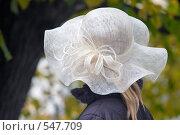 Купить «Девушка в шляпке», фото № 547709, снято 11 октября 2008 г. (c) Сергей Лаврентьев / Фотобанк Лори