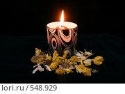 Купить «Горящая свеча в черном подсвечнике с декором из цветов и аммонитов», фото № 548929, снято 15 ноября 2018 г. (c) Дианова Елена / Фотобанк Лори