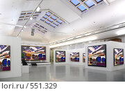 Купить «Художественная галерея», фото № 551329, снято 6 декабря 2019 г. (c) Losevsky Pavel / Фотобанк Лори