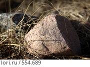 Камень среди желтой травы крупно. Стоковое фото, фотограф Алексей Семенов / Фотобанк Лори