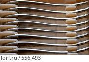Купить «Столовые приборы», фото № 556493, снято 12 ноября 2008 г. (c) Елена Галачьянц / Фотобанк Лори