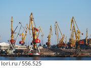 Купить «Портовые краны», фото № 556525, снято 30 сентября 2008 г. (c) Kate Kovalenko / Фотобанк Лори