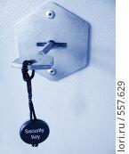 Купить «Ключ от сейфа, где деньги лежат», фото № 557629, снято 21 марта 2008 г. (c) Сергей Байков / Фотобанк Лори