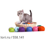 Купить «Котенок в корзинке с цветными нитками», фото № 558141, снято 20 сентября 2008 г. (c) Cветлана Гладкова / Фотобанк Лори