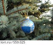 Купить «Елочный шар синий», фото № 559025, снято 13 ноября 2008 г. (c) Ольга Долотина / Фотобанк Лори
