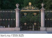 Купить «Ворота и решетка Летнего сада. Раннее утро. Санкт-Петербург», эксклюзивное фото № 559925, снято 10 августа 2008 г. (c) Александр Щепин / Фотобанк Лори