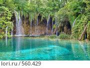 Купить «Водопад, Плитвицкие озера, Хорватия», фото № 560429, снято 7 сентября 2008 г. (c) Fro / Фотобанк Лори