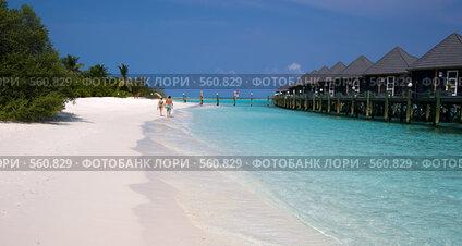 Купить «Бунгало на тропическом пляже. Мальдивы», фото № 560829, снято 19 ноября 2017 г. (c) SummeRain / Фотобанк Лори