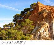 Горы и сосны Португалии, Алгарве (2008 год). Стоковое фото, фотограф Ольга Полякова / Фотобанк Лори