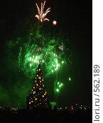Зеленый фейерверк. Стоковое фото, фотограф Алина Анохина / Фотобанк Лори