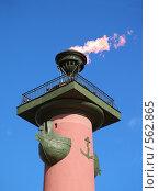 Купить «Ростральная колонна в Санкт-Петербурге, Россия», фото № 562865, снято 27 июля 2008 г. (c) Александр Кузовлев / Фотобанк Лори