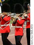 Купить «Медные трубы», фото № 565473, снято 13 июня 2007 г. (c) Маргарита Герм / Фотобанк Лори