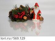 Новогодние украшения (2008 год). Редакционное фото, фотограф Елена Элевтерова / Фотобанк Лори