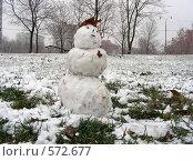 Купить «Первый снеговик в этом году», эксклюзивное фото № 572677, снято 20 ноября 2008 г. (c) lana1501 / Фотобанк Лори