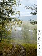 Купить «Осенний пейзаж с дождем», эксклюзивное фото № 575749, снято 12 сентября 2008 г. (c) Татьяна Белова / Фотобанк Лори
