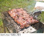 Купить «Шашлык», фото № 580781, снято 18 мая 2008 г. (c) Туркин Вадим / Фотобанк Лори