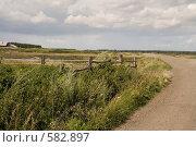 Купить «Сельская дорога», фото № 582897, снято 31 июля 2008 г. (c) Александр Ерёмин / Фотобанк Лори