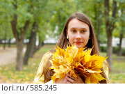 Купить «Портрет девушки с кленовыми листьями», фото № 585245, снято 1 октября 2008 г. (c) Мирослава Безман / Фотобанк Лори