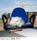 Купить «Начальник на фоне строящегося дома», фото № 588717, снято 19 октября 2008 г. (c) Георгий Shpade / Фотобанк Лори