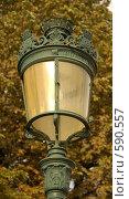 Купить «Красивый фонарь», фото № 590557, снято 29 июля 2006 г. (c) Юлия Подгорная / Фотобанк Лори