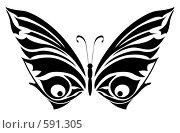 Купить «Бабочка», иллюстрация № 591305 (c) Сергей Лаврентьев / Фотобанк Лори