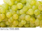 Купить «Фон из свежего винограда», фото № 593885, снято 24 августа 2008 г. (c) Мельников Дмитрий / Фотобанк Лори