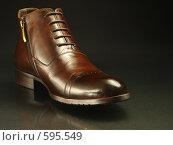 Купить «Коричневый зимний ботинок на темном фоне», фото № 595549, снято 29 ноября 2008 г. (c) Александр Кузовлев / Фотобанк Лори