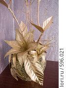 Купить «Композиция для своего дома», фото № 596021, снято 30 ноября 2008 г. (c) Федор Королевский / Фотобанк Лори