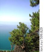 Купить «Чёрное море в Абхазии», фото № 599829, снято 26 июля 2007 г. (c) Галина Гуреева / Фотобанк Лори