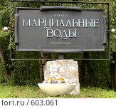 Купить «Курорт Марциальные воды. Карелия», фото № 603061, снято 2 сентября 2006 г. (c) Юлия Селезнева / Фотобанк Лори