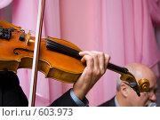 Купить «Скрипач», фото № 603973, снято 14 ноября 2008 г. (c) Олег Гуличев / Фотобанк Лори