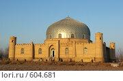 Купить «Узбекистан», фото № 604681, снято 31 декабря 2007 г. (c) Раппопорт Михаил / Фотобанк Лори